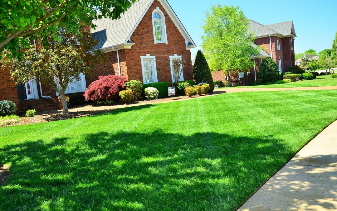The Benefits of Professional Commercial & Residential Landscaping Services