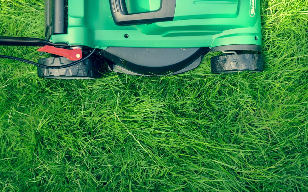 Five Essential Landscaping Services Your Lawn Needs