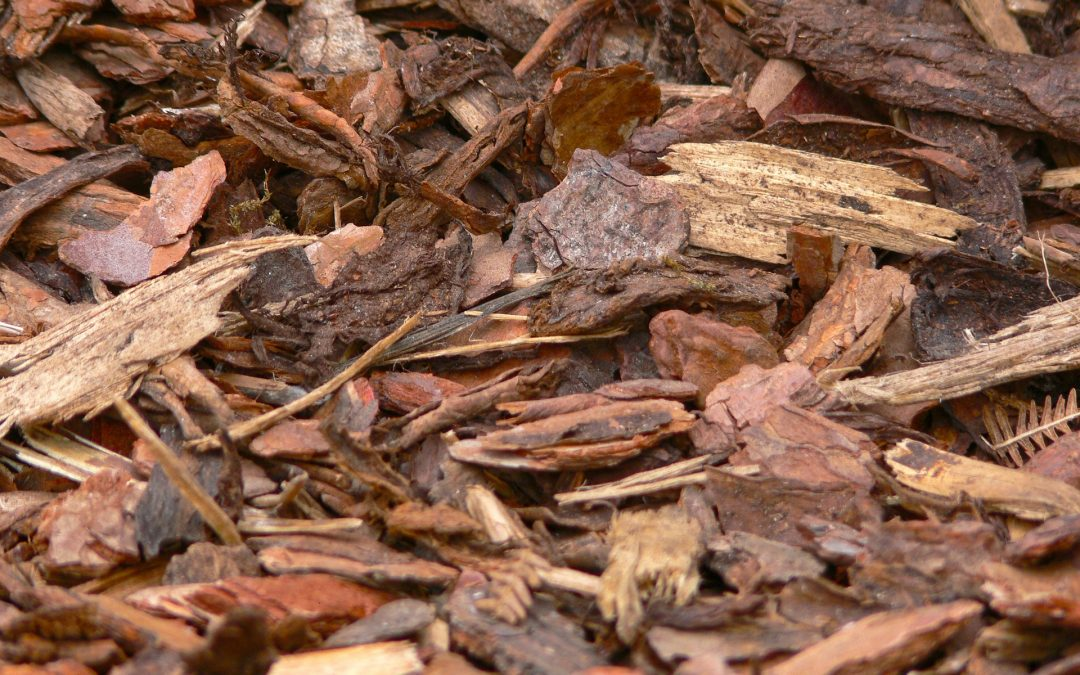Benefits of Hiring a Mulching Service
