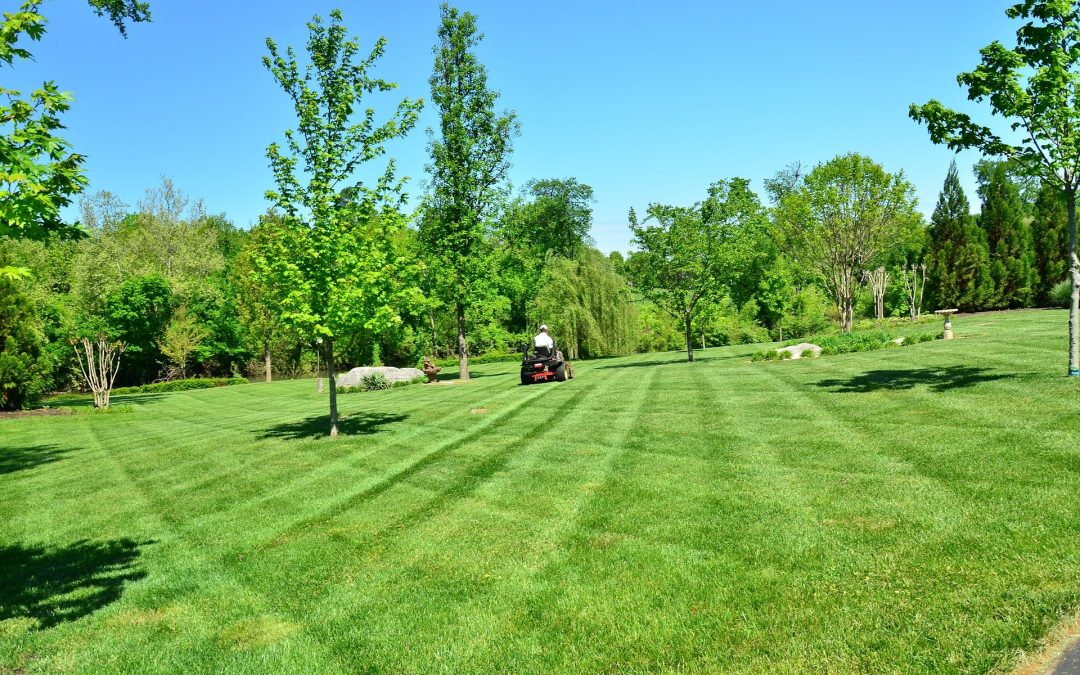 3 Tips for Choosing the Right Landscape Contractor