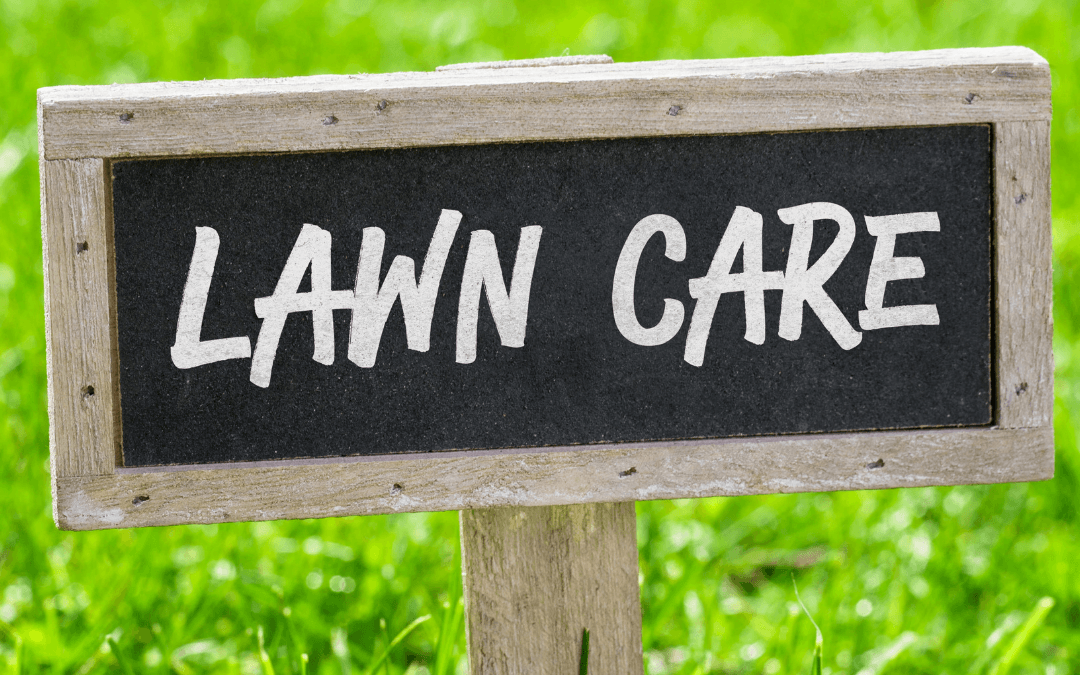 5 Ways To Save On Lawn Care