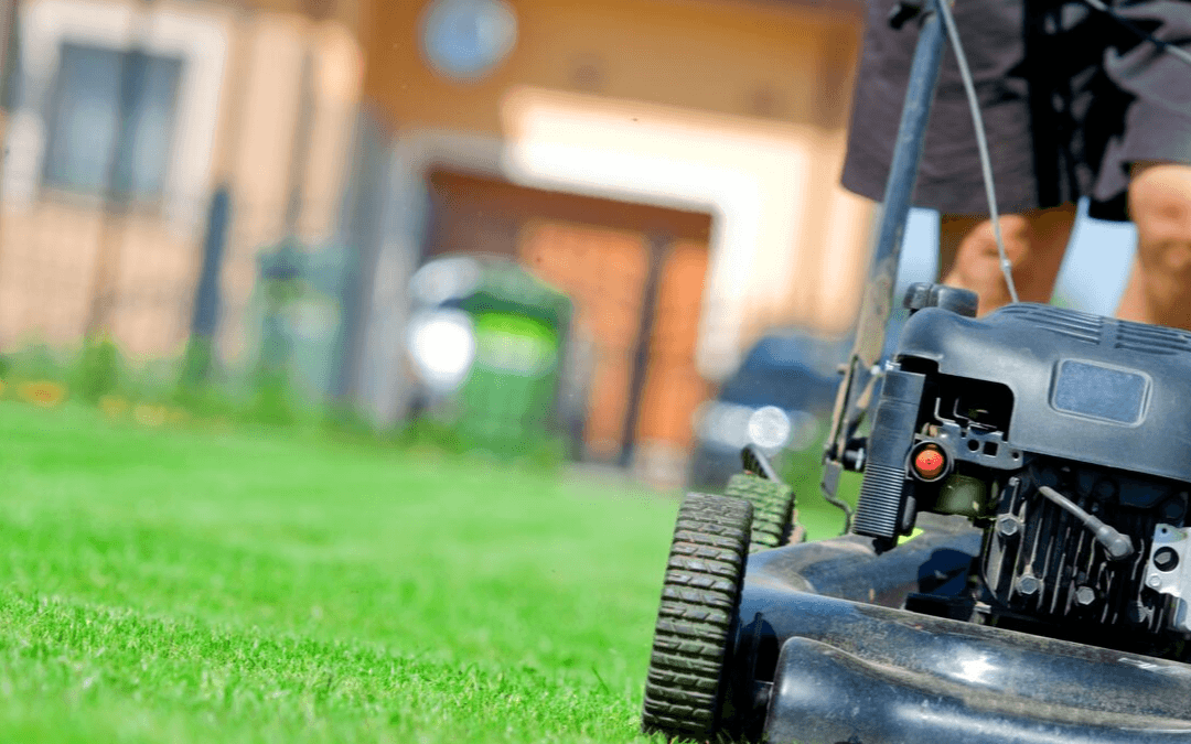 How To Maintain Healthy Lawn Care in Palm Bay Florida